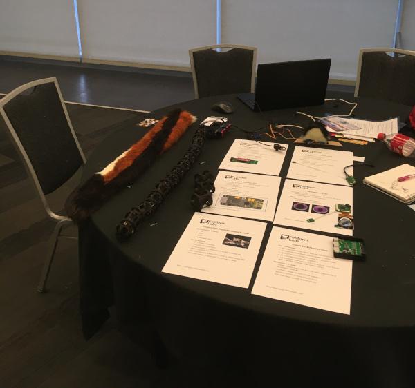 Animatronic prototypes displayed on a table